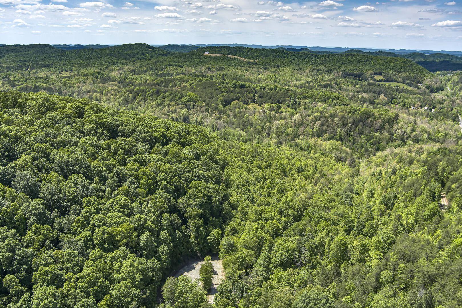 Photo of 77 acres Laurel Creek Road, Tellico Plains, TN 37385 (MLS # 1153361)
