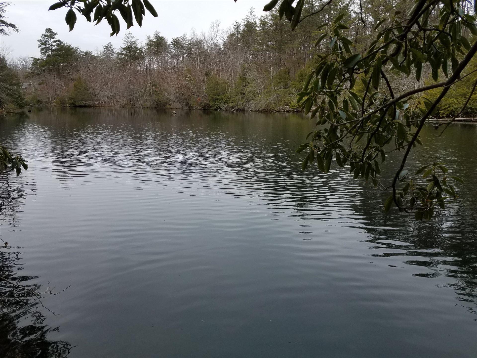 Photo for Cumberland Lakes Drive, Monterey, TN 38574 (MLS # 1152376)