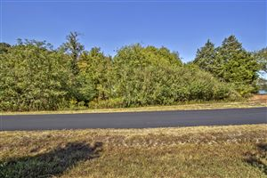 Photo of 101 Okmulgee Place, Loudon, TN 37774 (MLS # 1095379)