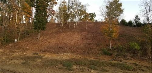 Photo of Lot 49 Rocky Point Way Way, Sevierville, TN 37876 (MLS # 1135392)