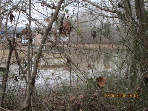 Photo of 375 Ellis Rd, Kingston, TN 37763 (MLS # 1117399)