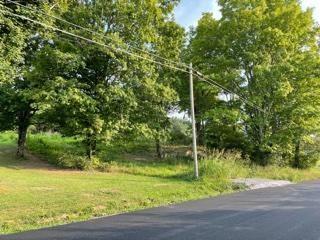 Photo of 645 Farrell St, Niota, TN 37826 (MLS # 1162401)