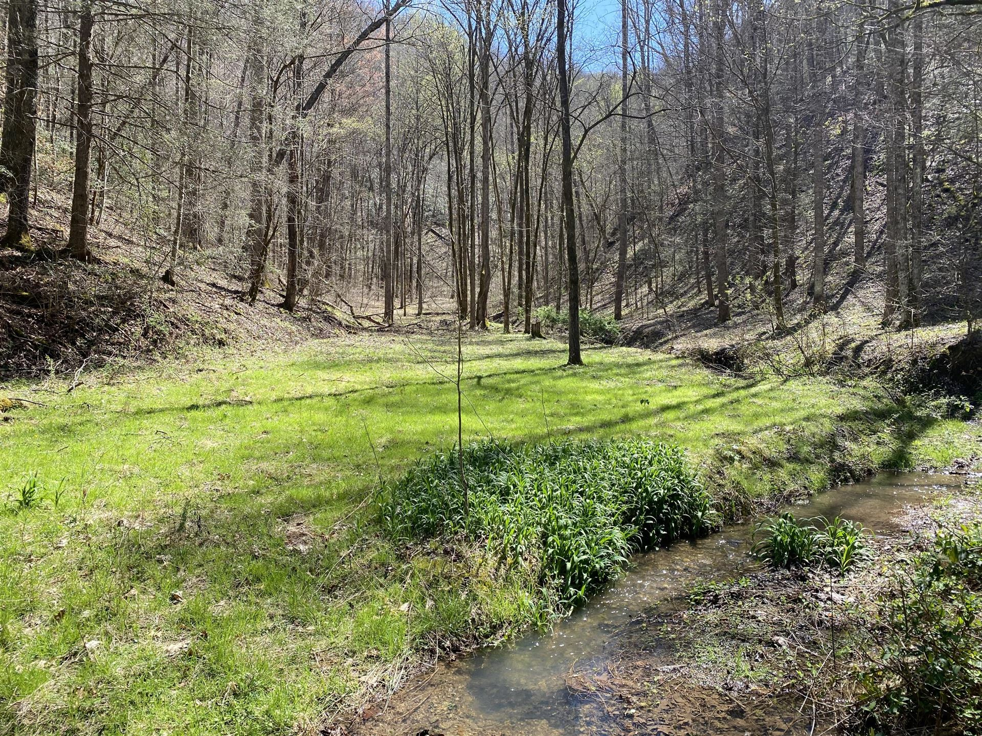 Photo of Valley Springs Way, Sevierville, TN 37862 (MLS # 1161410)