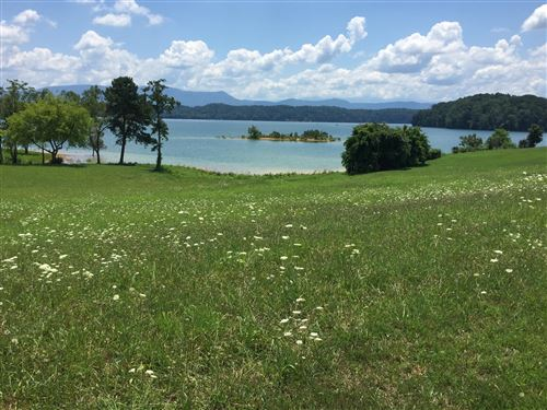 Photo of Lt 106 Majestic Circle, Dandridge, TN 37725 (MLS # 1102411)