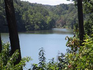 Photo of 201 Amohi Way, Loudon, TN 37774 (MLS # 1087428)