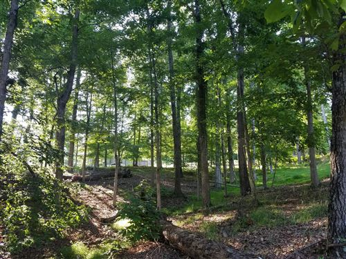 Tiny photo for 702 E Muskogee Drive, Mooresburg, TN 37811 (MLS # 1111431)