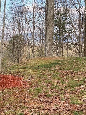 Photo of 0 Dollys Drive, Sevierville, TN 37876 (MLS # 1152440)