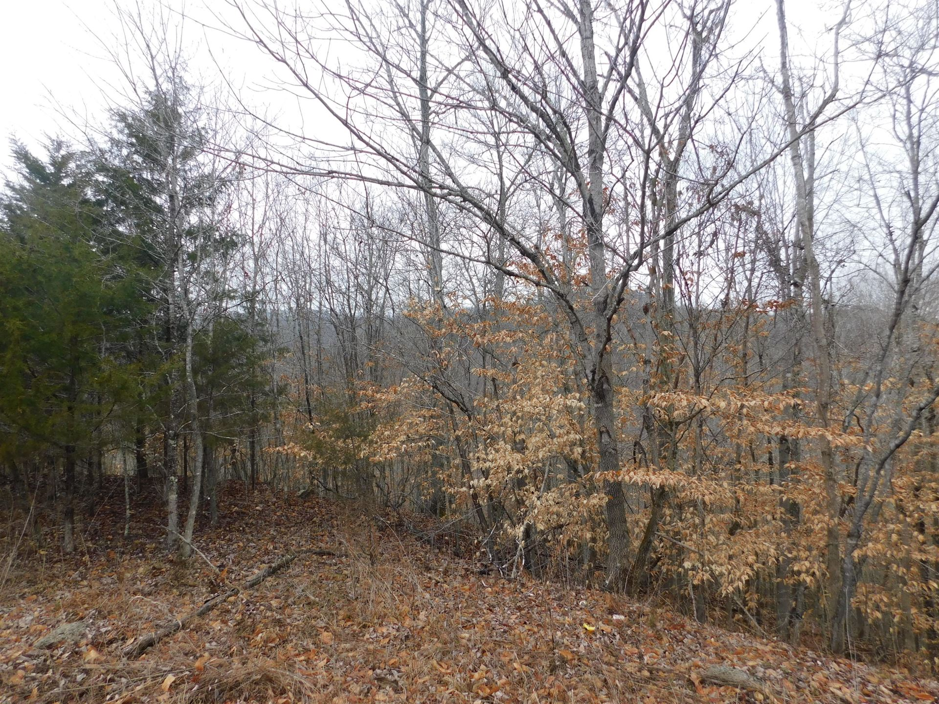 Photo for Lot 362 Morning Glory Rd, New Tazewell, TN 37825 (MLS # 1140446)