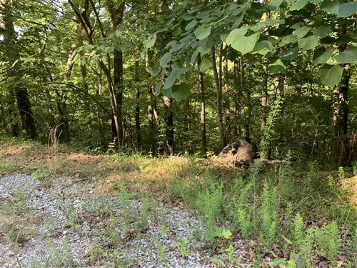 Tiny photo for Lot 72 Fox Lake Lane, LaFollette, TN 37766 (MLS # 1136459)