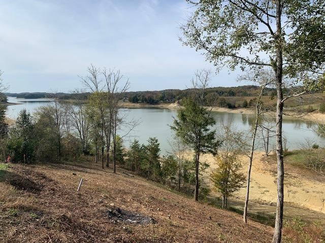 Photo for Sevierville, TN 37876 (MLS # 1135459)