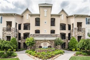 Photo of 555 Rarity Bay Pkwy #201, Vonore, TN 37885 (MLS # 1080468)