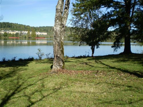 Photo of 8005 River Drive, Oak Ridge, TN 37830 (MLS # 1093473)