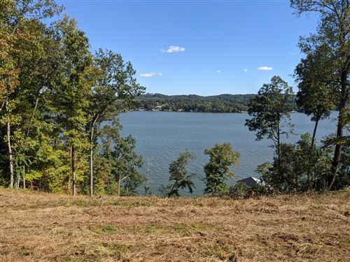 Photo of 144 Loch Haven Rd, Rockwood, TN 37854 (MLS # 1132485)
