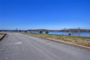 Photo of 270 Bay Pointe Rd, Vonore, TN 37885 (MLS # 1064487)