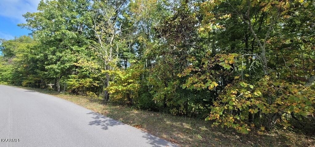 Photo of Lot 97A Shell Mtn Rd, Sevierville, TN 37876 (MLS # 1171509)