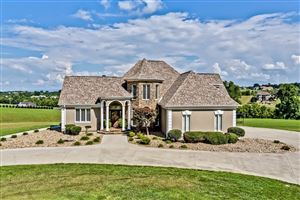 Photo of 527 Mountain View Drive, Vonore, TN 37885 (MLS # 1067513)