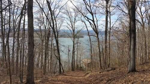 Photo of Johnson Ln, Ten Mile, TN 37880 (MLS # 1136522)