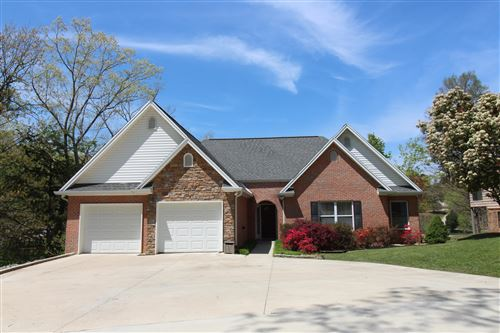 Photo of 941 Ewing Rd, Spring City, TN 37381 (MLS # 1102532)