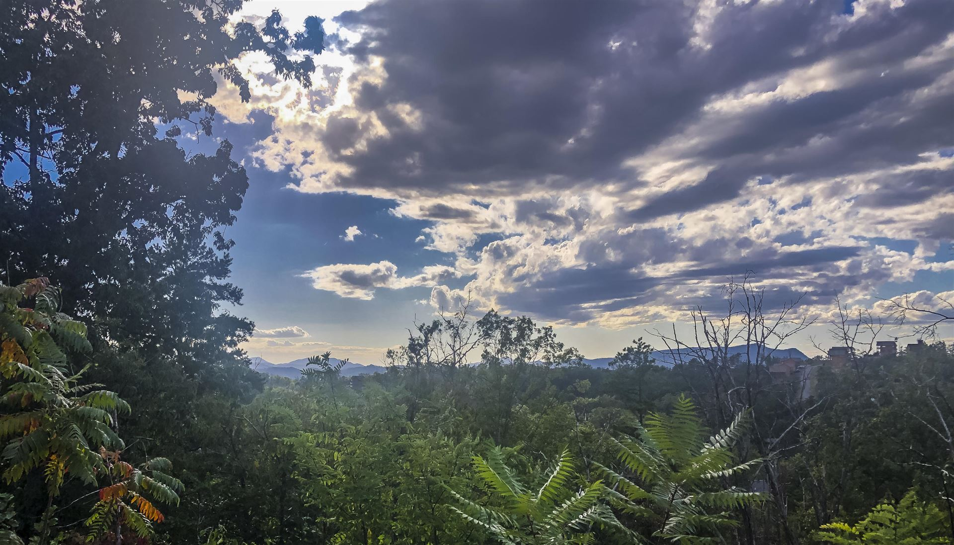 Photo of 2130 Windy Lane, Sevierville, TN 37876 (MLS # 1131533)