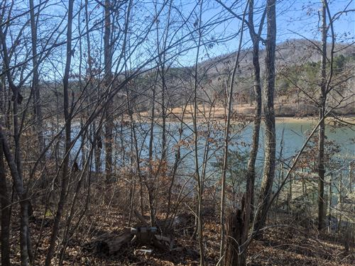 Tiny photo for Omega Drive, Spring City, TN 37381 (MLS # 1143534)