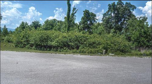 Photo of 107 Coyote Ridge, Rockwood, TN 37854 (MLS # 1127545)