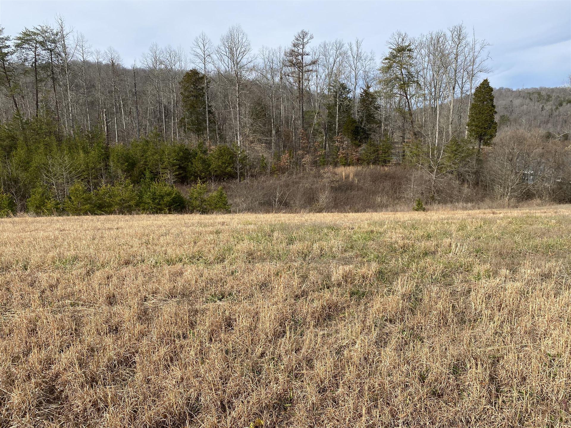 Photo of 135 Pineberry West Rd, Oak Ridge, TN 37830 (MLS # 1139579)