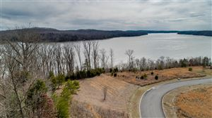 Photo of Docks Of The Bay Drive, Harriman, TN 37748 (MLS # 1069587)