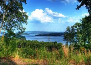 Photo for 521 Eagle Point Drive, Rockwood, TN 37854 (MLS # 1017594)