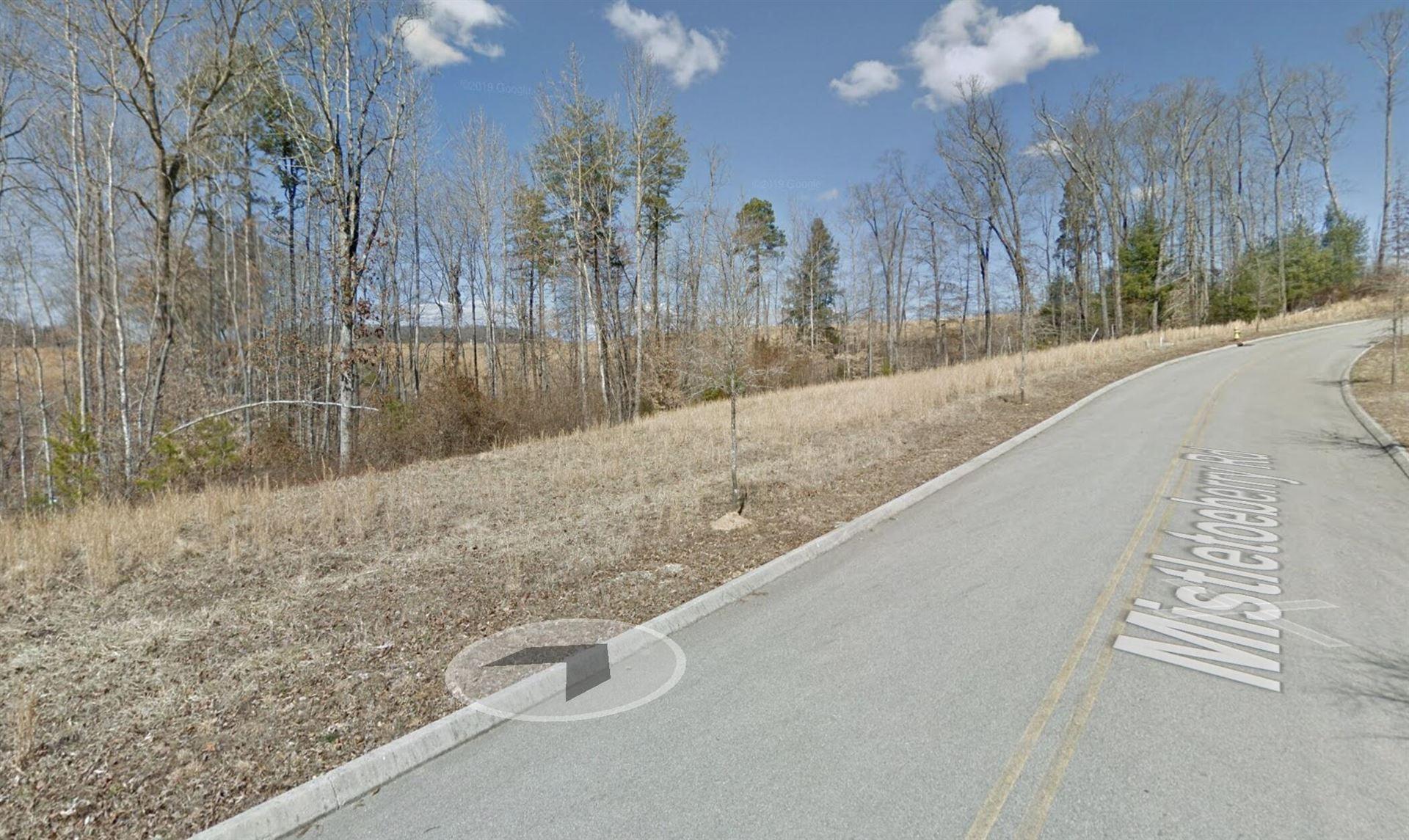 Photo of 141 Mistletoeberry Rd, Oak Ridge, TN 37830 (MLS # 1155607)