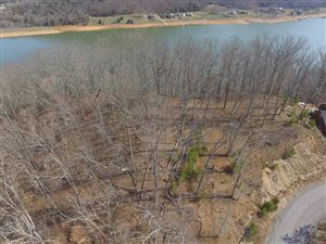 Photo of Lot 52 Hickory Knoll Circle, Whitesburg, TN 37891 (MLS # 1063632)