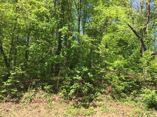 Photo of 107 Mohawk Lane, Loudon, TN 37774 (MLS # 1144648)