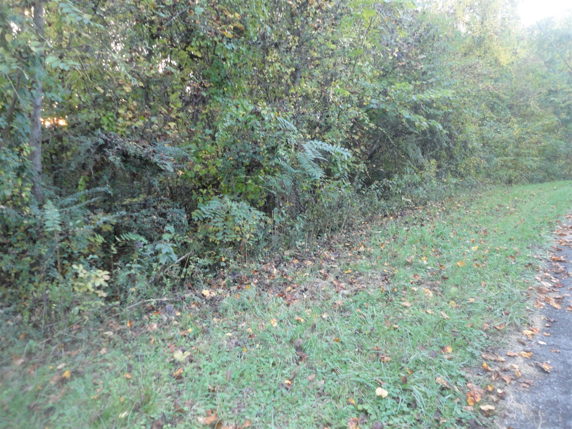 Photo for Hiawassee Drive, Jacksboro, TN 37757 (MLS # 1132651)