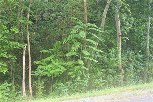Photo of 115 Lake Harbor Drive, Lenoir City, TN 37772 (MLS # 1149665)