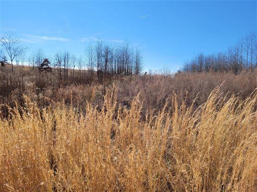 Photo of Lot 343 Water View Drive, Rockwood, TN 37854 (MLS # 1140668)