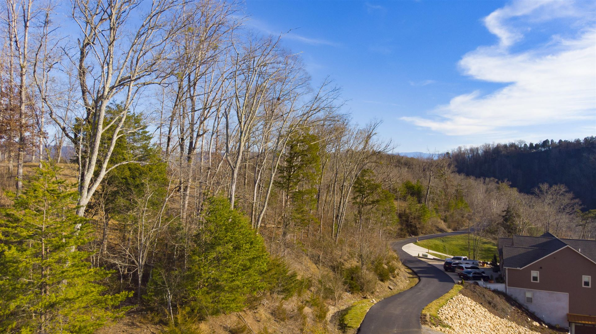 Photo of Lot 101 Sanctuary Shores Way, Sevierville, TN 37876 (MLS # 1140681)
