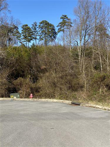 Photo of 0 Campbells Point Rd, Corryton, TN 37721 (MLS # 1162699)