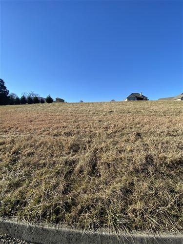 Photo of 7411 Youmans Lane, Corryton, TN 37721 (MLS # 1162701)