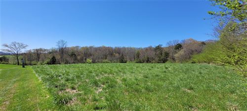Photo of 201 Woods Drive, Greenback, TN 37742 (MLS # 1148704)