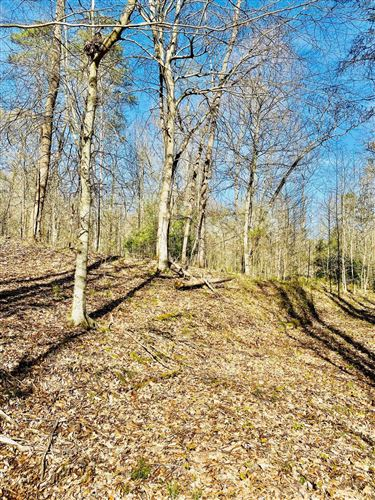 Photo of Laurel Wood Rd, New Tazewell, TN 37825 (MLS # 1150713)