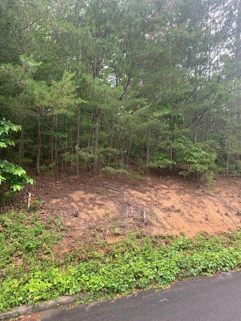 Photo of Lot 154 Bear Valley Rd, Sevierville, TN 37876 (MLS # 1156714)