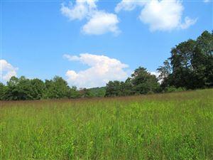 Photo of Highway 61, Andersonville, TN 37705 (MLS # 940739)