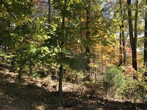 Photo of Nebo Mountain Rd, Walland, TN 37886 (MLS # 1019740)