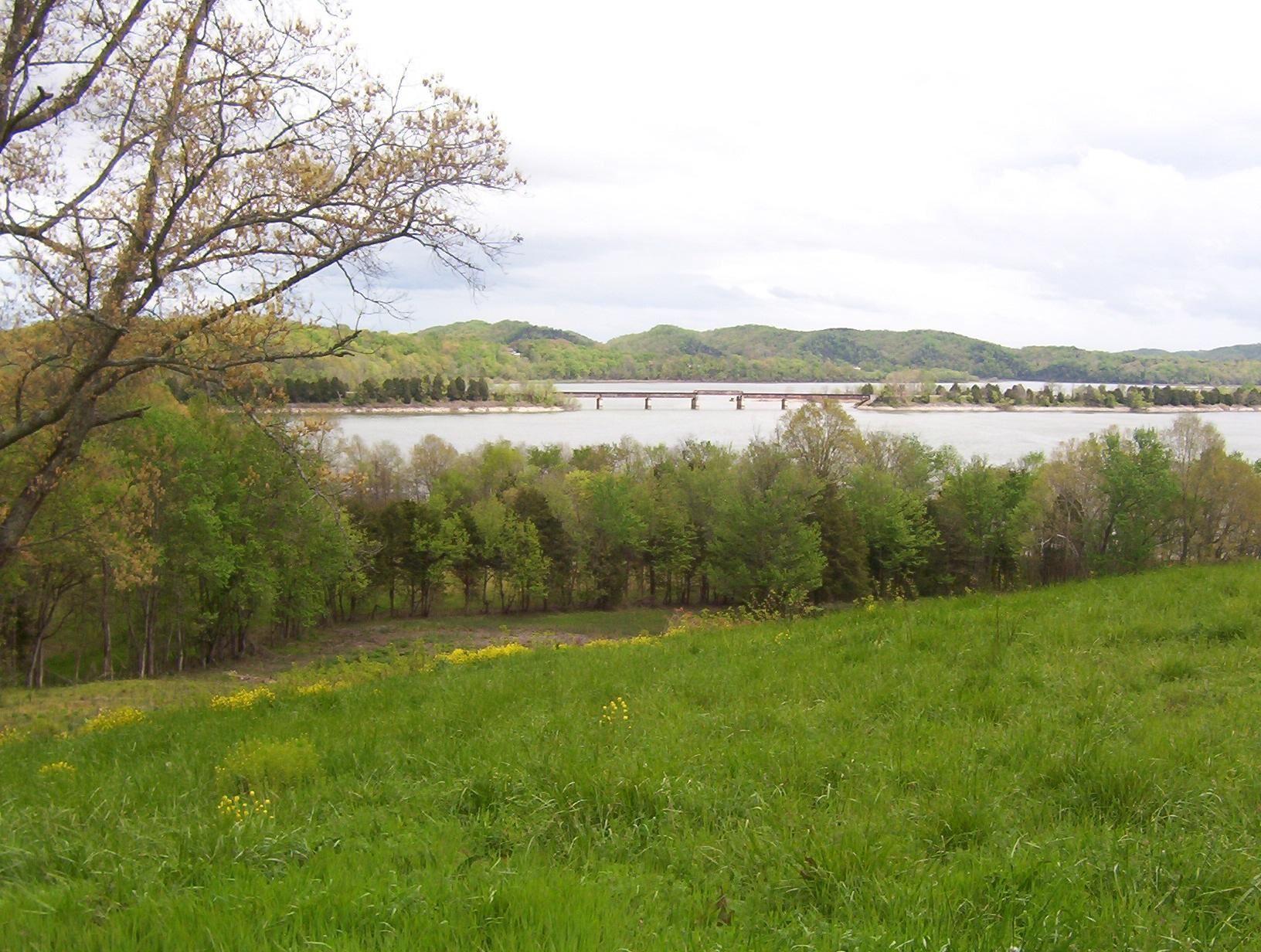 Photo for 3440 Leadvale Rd, White Pine, TN 37890 (MLS # 1121750)