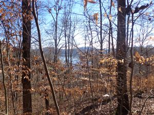 Tiny photo for 184 Lakeview Dr., Sharps Chapel, TN 37866 (MLS # 1086753)