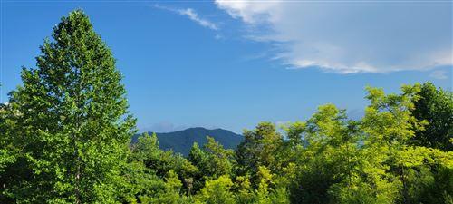 Photo of Hunter Ridge Way, Del Rio, TN 37727 (MLS # 1161753)