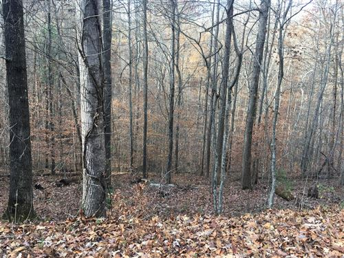 Photo of Hiwassee View Drive, Jacksboro, TN 37757 (MLS # 1101764)