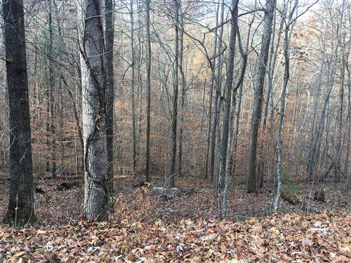 Photo of Hiwassee View Drive, Jacksboro, TN 37757 (MLS # 1101764)