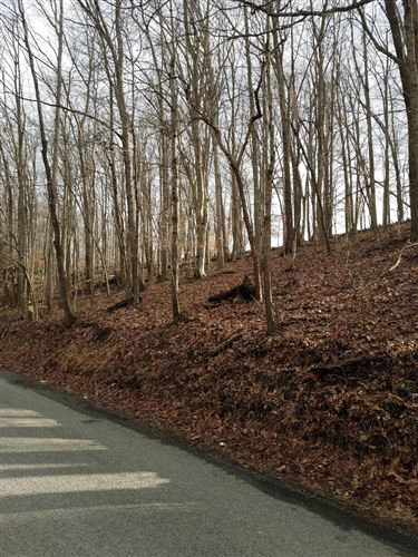 Photo of Old Cave Springs Rd, Tazewell, TN 37879 (MLS # 1144782)