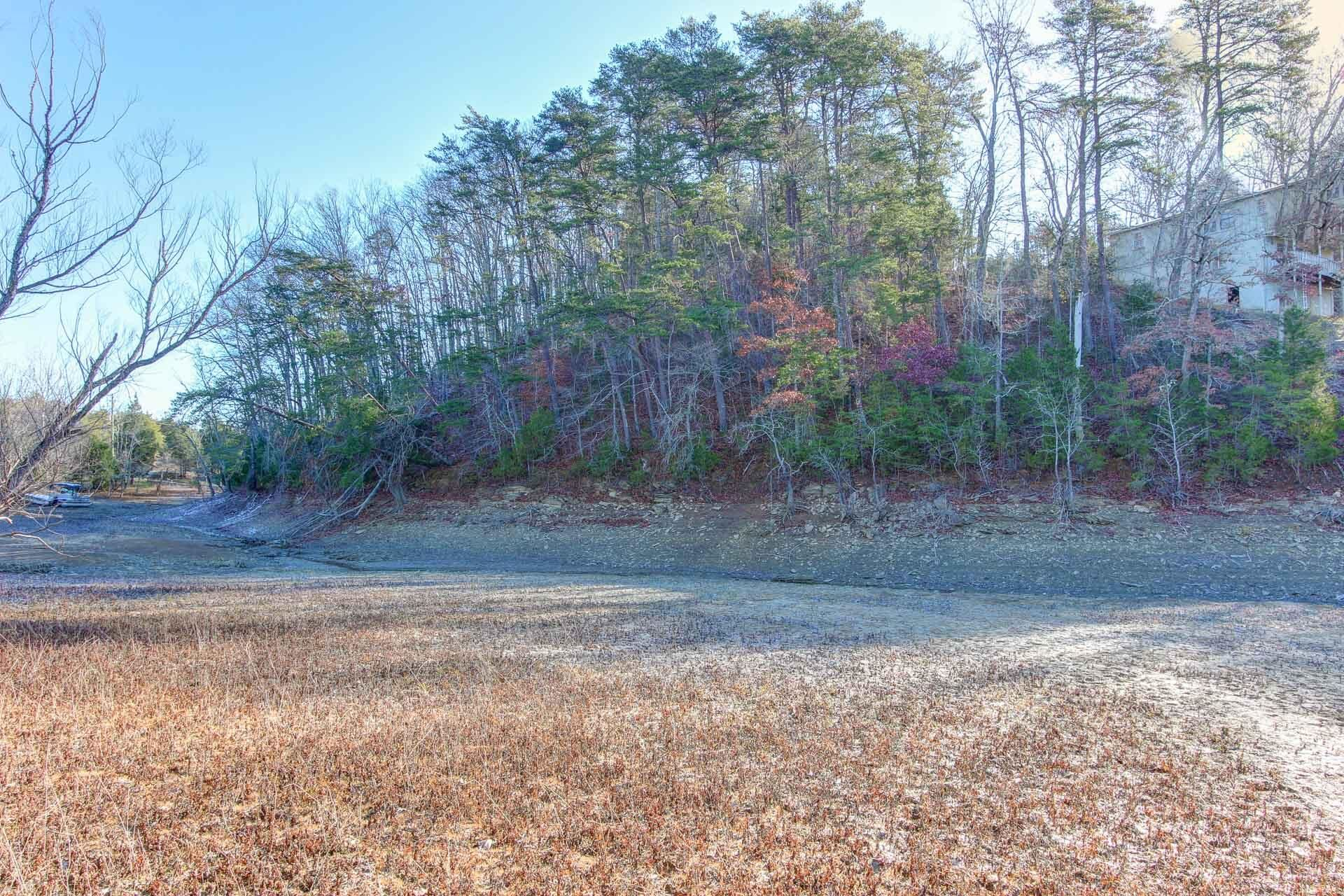 Photo of L29 Driftwood Circle, Sevierville, TN 37876 (MLS # 1167793)