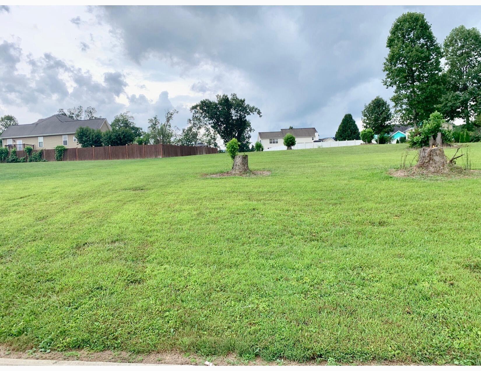 Photo of Bluff, Jacksboro, TN 37757 (MLS # 1167804)
